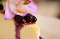 Nutty Blueberry Cheesecake